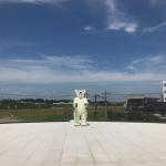 【立体アート事例】富山県美術館の屋外彫刻・三沢厚彦のAnimals